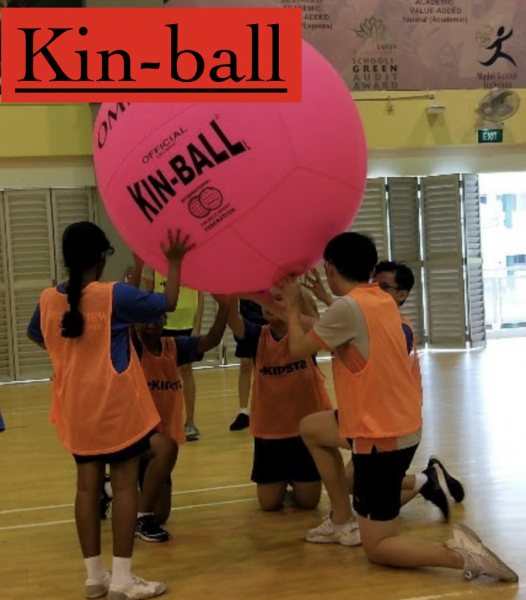 Kinball Videos on 5 July 2019 - Google Drive 2020-04-07 13-41-01
