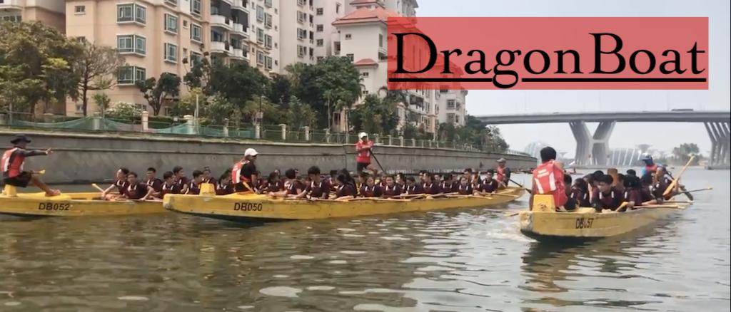 dragonboat MOS