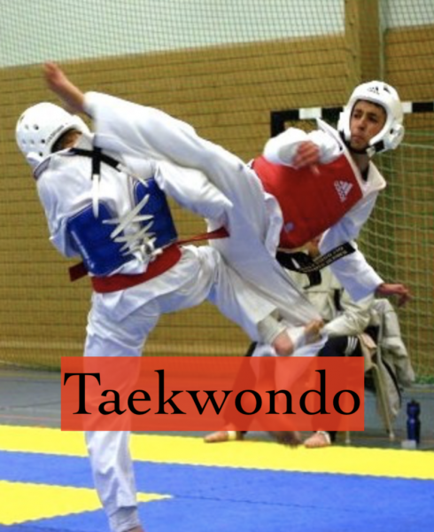 Taekwondo MOS