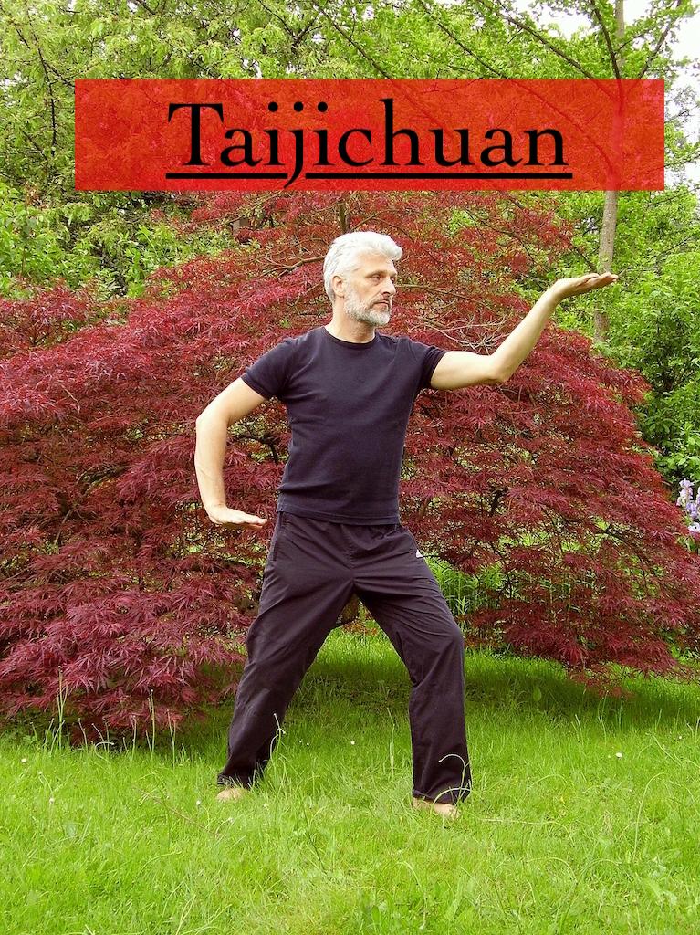 taijichuan MOS